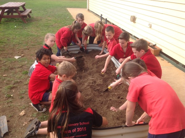 Gardening with Bunnings